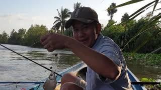 Rủ vợ đi câu cá sông | Săn bắt SÓC TRĂNG |