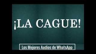 La Cagué - Los Mejores Audios De WhatsApp