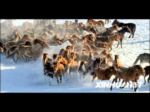 Rjabinuska - Nina Savic video