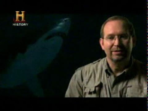 Mundo Jurásico - Megalodon (Tiburón Monstruo Gigante) - Parte 6 de 7