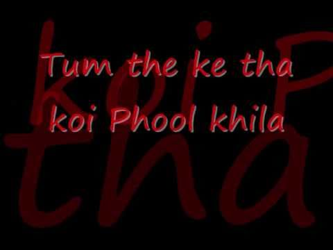 Veer Zaara Do Pal Lyrics.wmv