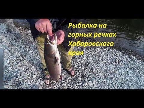видео рыбная ловля  в реках хаб. края