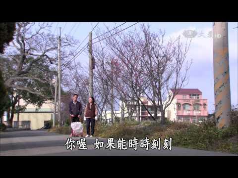 大愛-長情劇展-葡萄藤下的春天-EP 10