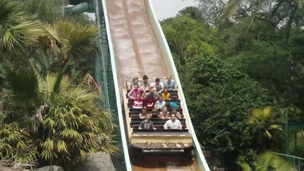 Busch Gardens Tampa Florida Youtube