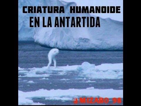 CRIATURA HUMANOIDE EN LA ANTÁRTIDA