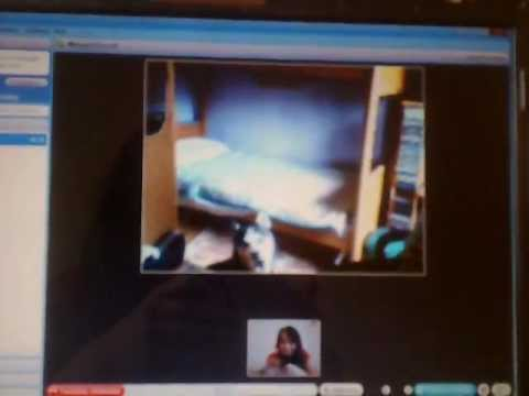 parlando con Rock su Skype! (talking with Rock on Skype)
