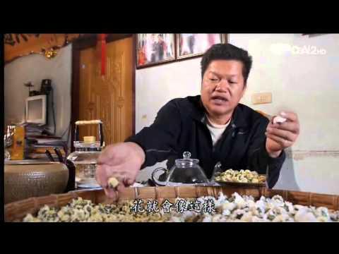 蔬果生活誌-20140222 明目菊花茶