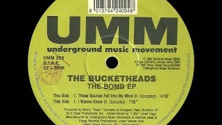 (1995) THE BUCKETHEADS - The bomb EP