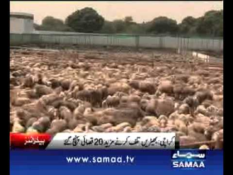 NEWS HEADLINE 04:00 PM. 17-09-2012 SAMAA TV