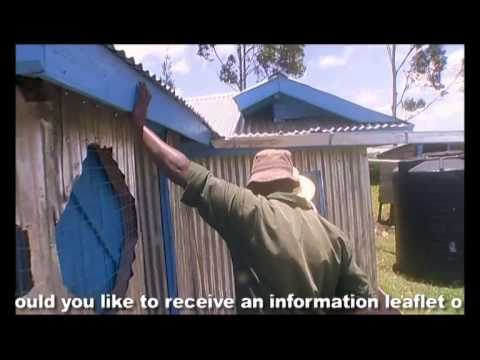 Shamba Shape Up (Swahili) - Chickens, Solar Light, Certified Seeds