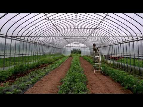 Vegetable Garden Design Vegetable Garden Design