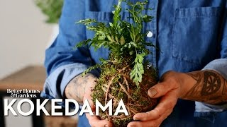 Try the Trend: Kokedama