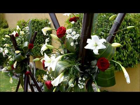 Une d charge transform e en jardin plus qu 39 un symbole for Un jardin con enanitos letra
