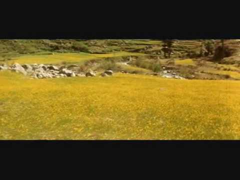 Kaadhal Rojave.wmv video