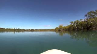 Flat water SUP session in Theodolite Creek