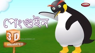 Penguin Rhyme in Bengali | বাংলা গান | Bengali Rhymes For Kids | 3D Bird Songs in Bengali | Poems