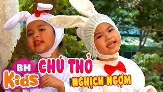 Chú Thỏ Nghịch Ngợm ♫ Nhạc Thiếu Nhi Vui Nhộn Cho Bé