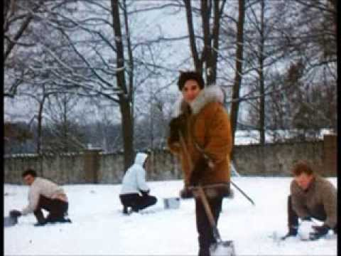 Elvis Presley - Snowbird