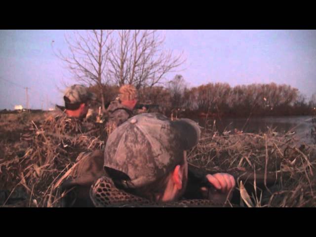 Duck Hunting - Mallard Beat Down