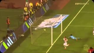 Çin - Hollanda Wesley Sneijder Muhteşem Gol