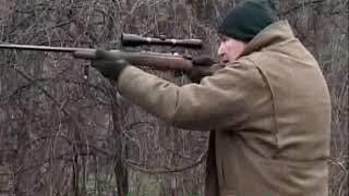 HUNTING IN CROATIA Driven Wild Boar  NOVEMBER 2014  (04)