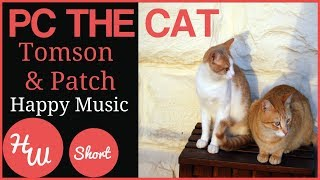 PC The Cat and Tomson and Patch Children's Happy Fun Music