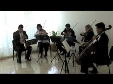 Gabriel`s Oboe - Ennio Morricone