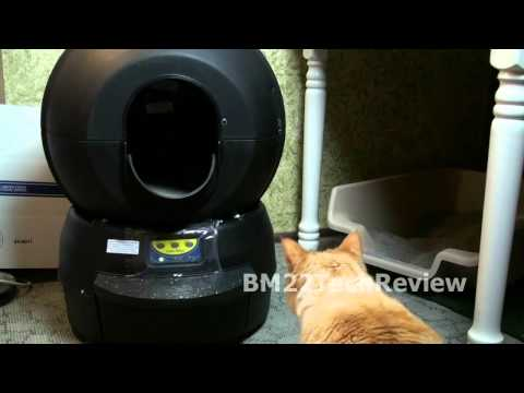 Litter-Robot II Review: Day #1