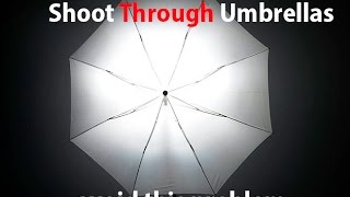 Shoot through umbrellas and large modifiers - avoid this potential problem