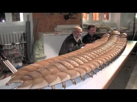 25 Strangest Prehistoric Creatures To Roam The Earth