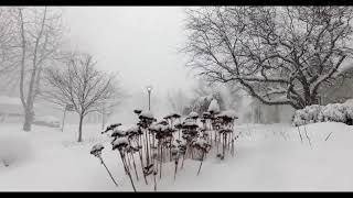 Time-Lapse: 28 inches of snow in 4 HOURS!!! (with aerials)