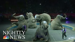 The End Of Ringling Bros. And Barnum & Bailey Circus | NBC Nightly News