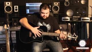 Tipuri de chitare! Prezentare