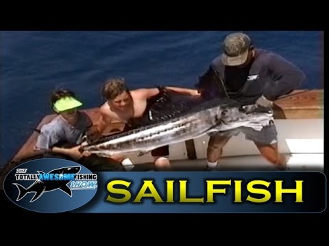 Sailfish - Ep.1 - Kids in the Keys -Vintage Series- Totally Awesome Fishing