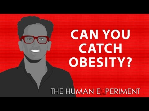 Can You Catch Obesity?