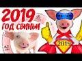 Год Свиньи 2019 китайский гороскоп на 2019 год Свиньи mp3