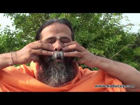Техники Крия йоги - Джоти мудра