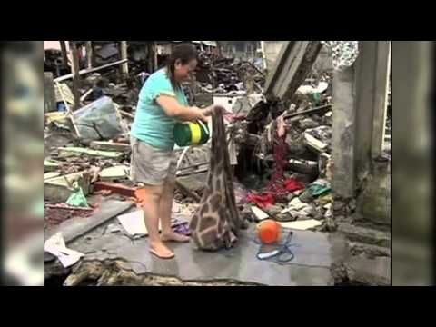 Philippine-Americans Help Typhoon Victims