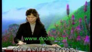 Chinese Music GuZheng Course in 11 Lessons MU727coohk