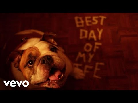 American Authors - Best Day Of My Life (dog Version) video