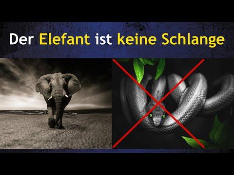Der Elefant ist keine Schlange