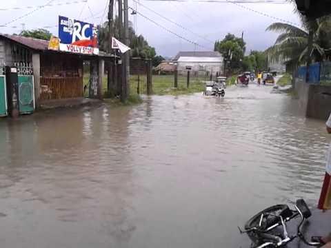 ...tubig + ulan = BAHA @ purok III saguing dinalupihan ,bataan