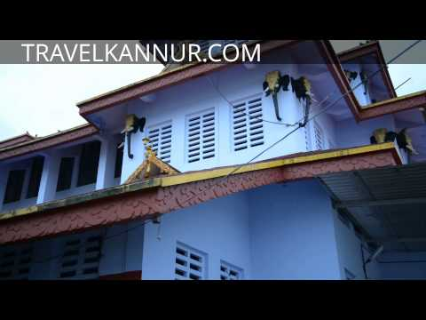 Parassini Sree Muthappan Temple (travelkannur) video