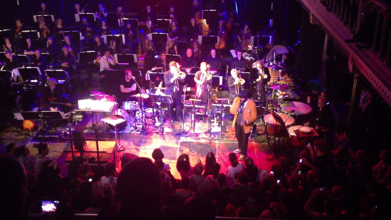 Peter Hamilton Orchestra Destination Musicland