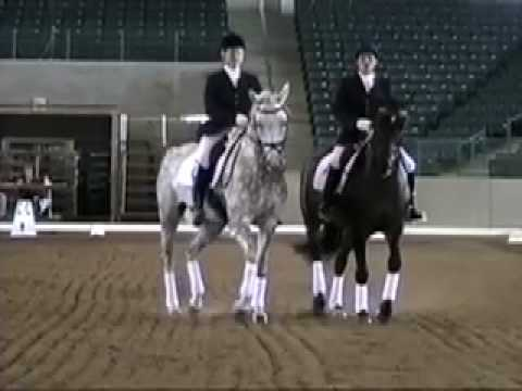 Contestant 4 – America's Next Dancing Dressage Star