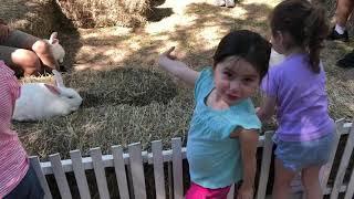 Emmy petting bunnies pt 2