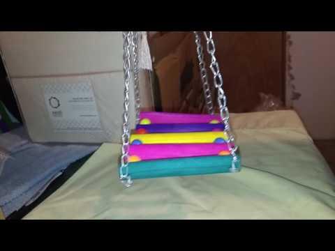 bird ladder.mp4