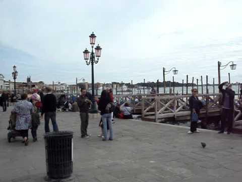 caccia al piccione a venezia