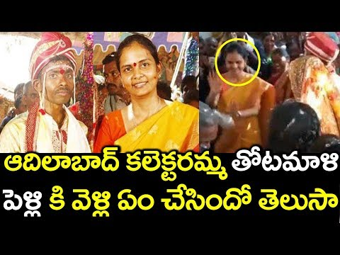 Adilabad District Collector Divya Devrajan Dances In Her Attender Marriage #9RosesMedia