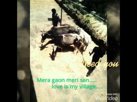 garhwali song my chouthan Drishya  my village tevaliya khal masoun